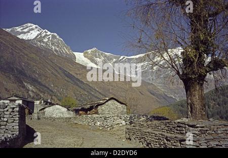 Dhaulagiri peak and farm cottages in Kali Gandaki valley on Annapurna circuit Himalayas Nepal from south of Kalopani - Stock Image
