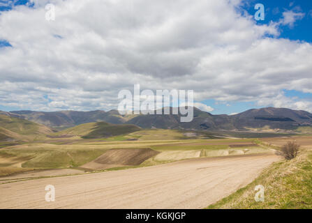 The plateau of Castelluccio di Norcia with fields for the cultivation of lentils - Stock Image