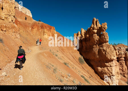 Hikers on the Queen's Garden Trail, Bryce Canyon National Park Utah, USA. - Stock Image
