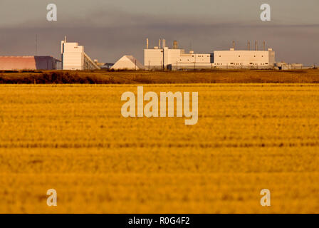 Potash Mine Saskatchewan farmers field agriculture environment - Stock Image