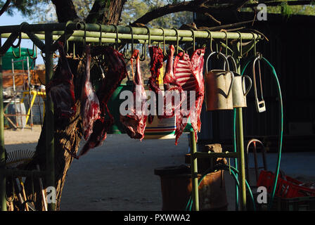 Drying meat in Namibia - Stock Image