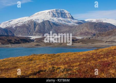 Greenland, Scoresby Sund, Gasefjord. Gasegletscher. Terminal and lateral moraine. - Stock Image