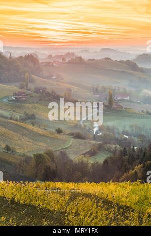 Sunrise in wine region. Spicnik, Kungota, Drava region, Slovenia. - Stock Image