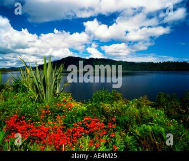 new zealand south island lake Wanaka - Stock Image