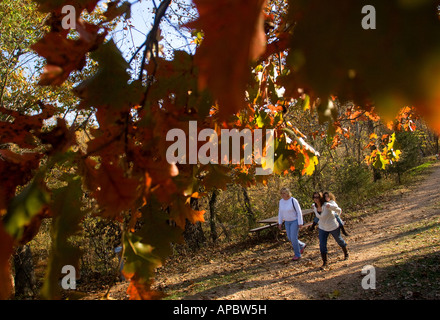 Outdoor enthusiasts walk the Tanyard Creek Trail in Bella Vista, Ark. - Stock Image