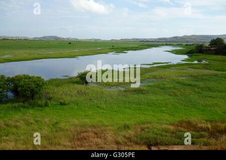 View of the floodplains and wetlands near East Alligator River in West Arnhem Land, Northern Territory, Australia - Stock Image