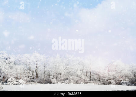 Blurred background of snow falling softly against a winter landscape of snow covered trees with large expanse of a beautiful wintry sky. - Stock Image