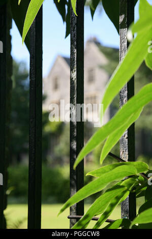 Looking through iron rails into grounds of Darlington Hall,Totnes, Devon, England, UK - Stock Image