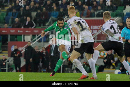 National Football Stadium at Windsor Park, Belfast, Northern Ireland. 21 March 2019. UEFA EURO 2020 Qualifier- Northern Ireland v Estonia. Action from tonight's game. Josh Magennis (21) gets a shot in for Northern Ireland.. Credit:David Hunter/Alamy Live News.. - Stock Image