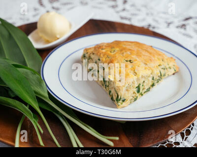 Plate with home made savory wild garlic scones and some wild garlic leaves. - Stock Image