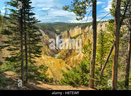 Yellowstone Canyon and lower falls, Wyoming, USA - Stock Image