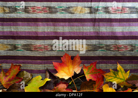 A cloth background decorated with colourful autumn leaves along bottom edge, with room for text on cloth. - Stock Image