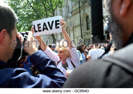 A lone Leave campaigner amongst a pro European Union demonstation (March for Europe), 2nd July 2016, London, UK. - Stock Image