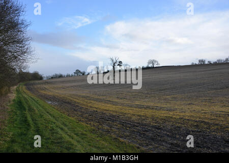 Bridleway near the north Oxfordshire village of Hook Norton which leads towards the Warwickshire village of Whichford - Stock Image