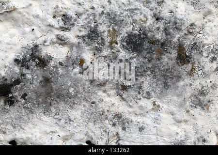 Closeup of an old wall. You can see abstract artistic combination of whites and greys from very close distance in this photo. Amazing surface texture. - Stock Image