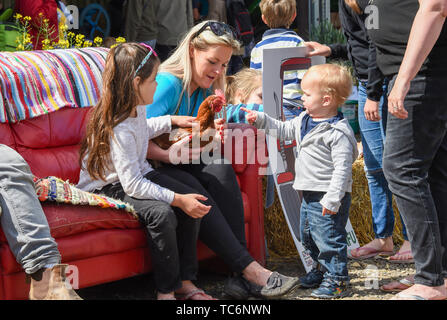 Ardingly Sussex UK 6th June 2019 - Youngsters meet a chicken on the first day of the South of England Show held at the Ardingly Showground in Sussex. The annual agricultural show highlights the best in British farming and produce and attracts thousands of visitors over three days . Credit : Simon Dack / Alamy Live News - Stock Image