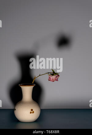 Abstract still life displaying dead, dried, dry rose in ceramic pot against grey background with a dark shadown that is bigger than itself to illustra - Stock Image