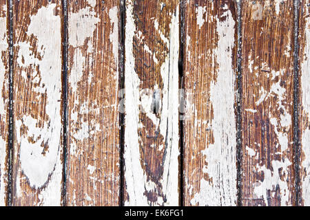 Distressed wooden panels with partly removed white paint - Stock Image