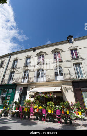 Chinon, France. Picturesque colourful view of a florist shop on Chinon's embankment, at Quai Jeanne d'Arc. - Stock Image