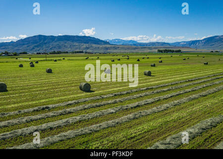 Wide view of hay field in American western farmland. - Stock Image