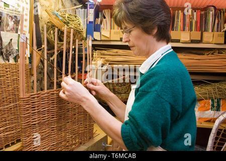 woman in workshop weaving willow basket - Stock Image