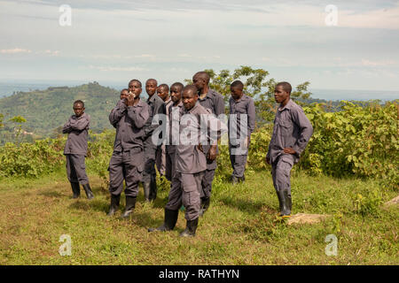 porters waiting to be hired to carry backpacks for gorilla trek, Bwindi Impenetrable Forest, Bwindi, Uganda, Africa - Stock Image