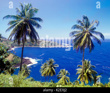 Owia Bay on the Windward Coast of St.Vincent..The Owia Salt Pond lies in the distance. Owia, St. Vincent. West Indies. - Stock Image