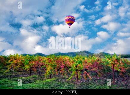 Hot air balloons over fall colored vineyards. Napa Valley, California - Stock Image