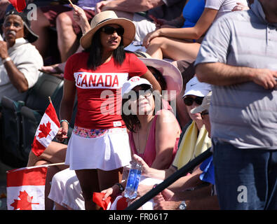 March 20, 2016: A fan of Milos Raonic of Canada in the ATP Singles Final during the 2016 BNP Parisbas Open at Indian - Stock Image