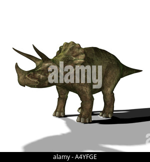 The Triceratops is called three-horn and about 9 m long and in the Cretaceous period occurred. The Triceratops is - Stock Image