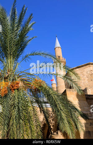 The Sellimiye Mosque with date palm tree, North Nicosia, Northern Cyprus. Cyprus October 2018 - Stock Image