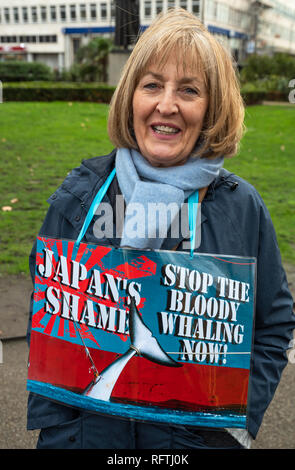 London, UK. 26th January 2019. London protest against the intended resumption of whaling by Japan.The Japanese government recently backed out of an international agreement banning commercial whaling. Campaigners rally at Cavendish Square for the march to the Japanese Embassy. Woman with Japan's Shame, Stop the Bloody Whaling Now sign. Credit: Stephen Bell/Alamy Live News. - Stock Image