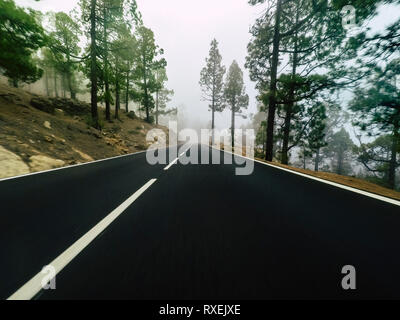 Long way road at the mountain with pines forest and fog clouds in front and grey clear sky - ground point of view with black asphalt and white lines - - Stock Image
