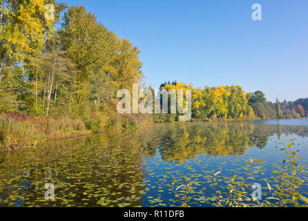 Deer Lake in Burnaby, British Columbia, Canada in the Autumn. - Stock Image