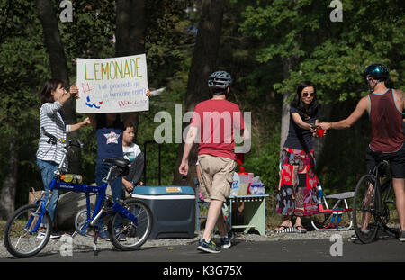 Lexington, MA, USA. 2 September 2017:  Two 5th grade girls with their mothers setup a lemonade stand on the Minuteman - Stock Image