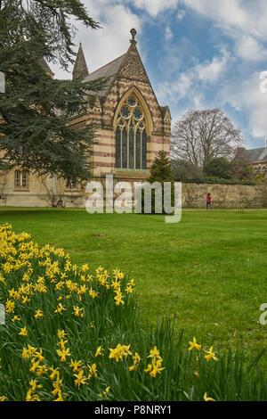 trinity college oxford  oxford college - Stock Image
