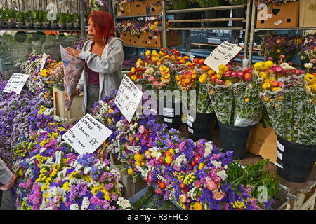 SUNDAY FLOWER MARKET, COLUMBIA ROAD, BETHNAL GREEN,TOWER HAMLETS, EAST LONDON. AUGUST 2018. The colourful Sunday morning street Flower Market is a bus - Stock Image