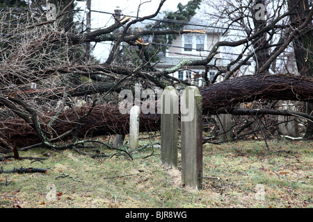 Old gravestones in a cemetery after a late winter wind storm - Stock Image