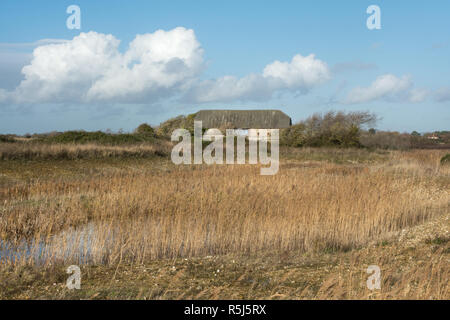 RSPB Medmerry Nature Reserve by the coast at Medmerry, West Sussex, UK. Reeds and wetland habitat around the marsh barn. - Stock Image