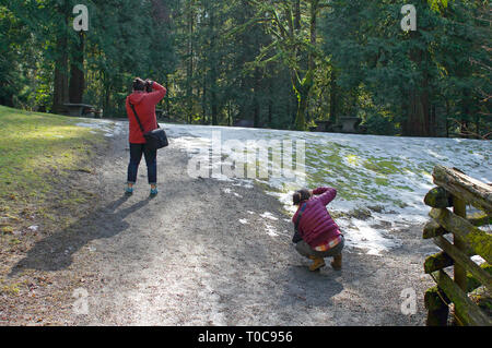 Two young Asian women photographing nature in a wooded park with snow on the ground. - Stock Image