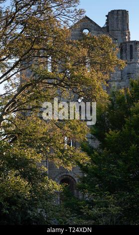 Kelso Abbey Scottish Borders UK in autumn - Stock Image