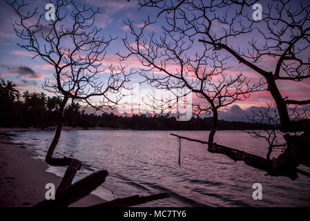 Trees silhouettes at sunset on postcard-style sandy beach of Mushu Island, Papua New Guinea - Stock Image