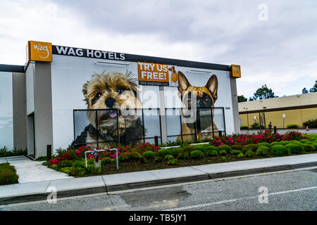 Wag Hotel Pet Boarding facility in the Silicon Valley California USA - Stock Image