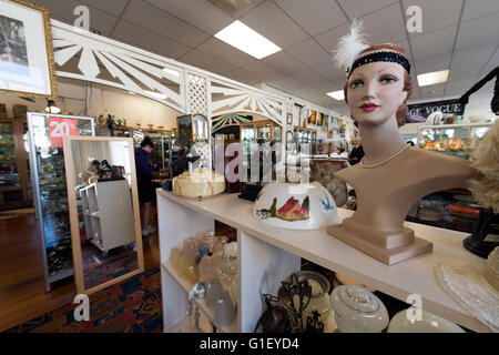 Antiques and collectables shop Napier New Zealand - Stock Image
