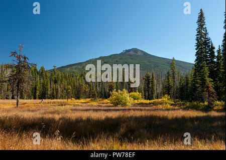 Olallie Butte and Olallie Meadow at the summit of Oregon's Cascade Range, evening light - Stock Image