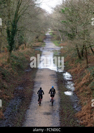 Two cyclists on mountain bikes along a disused railway line in winter, The New Forest, Hampshire, UK - Stock Image
