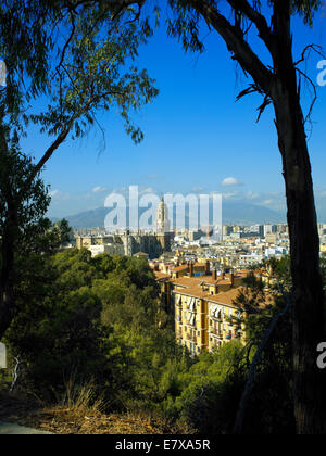 The skyline of Malaga - Stock Image