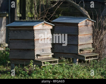 Pair of WBC Beehives - Stock Image