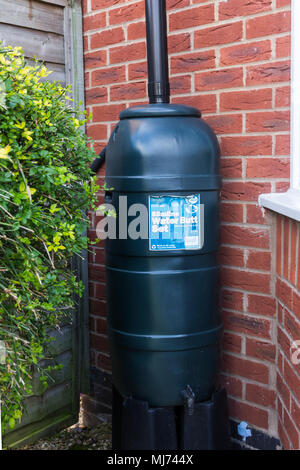 Ward Strata slimline water butt installed at the bottom of a downspout of a house in the UK. Environment-friendly method of providing water for use in - Stock Image