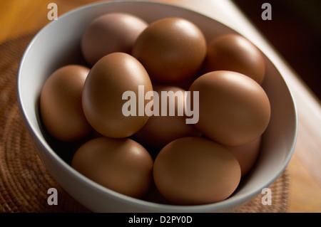 Bowl of fresh free range hens eggs - Stock Image